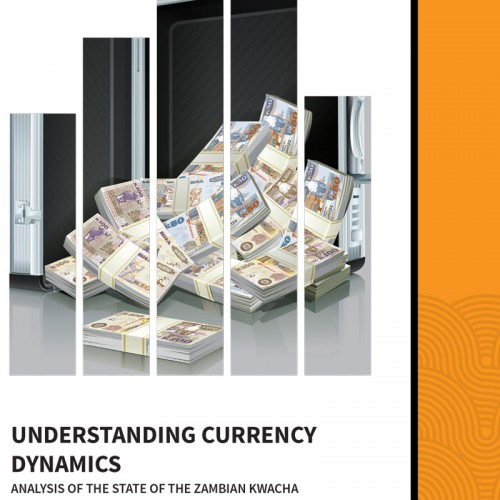 Understanding Currency Dynamics