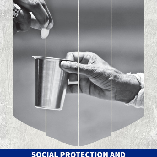Social Protection and Livelihood Series – Assessing the Impact of Social Cash Transfers – Analysis