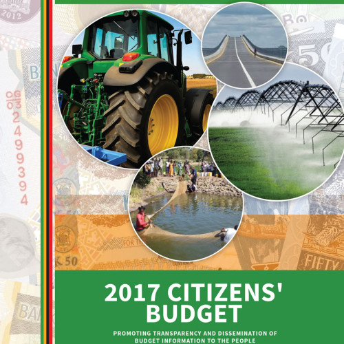 2017 Citizens Budget