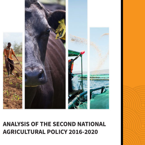 Analysis of the Second National Agricultural Policy 2016-2020